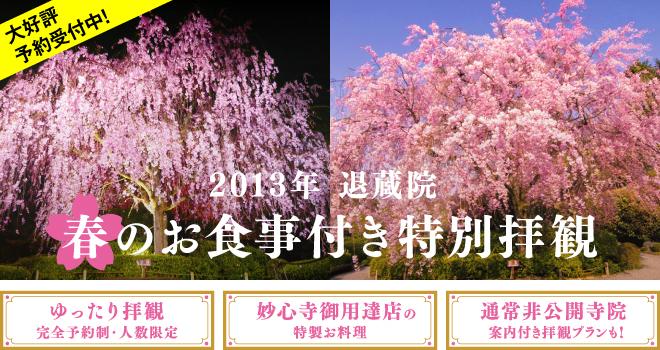 妙心寺退蔵院の桜の特別拝観