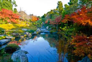 秋の池泉回遊式庭園池