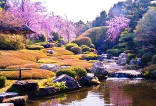陰と陽の庭