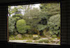 Plants: image 5 0f 27 thumb